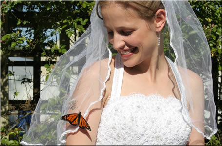 bride-with-monarch-butterfly