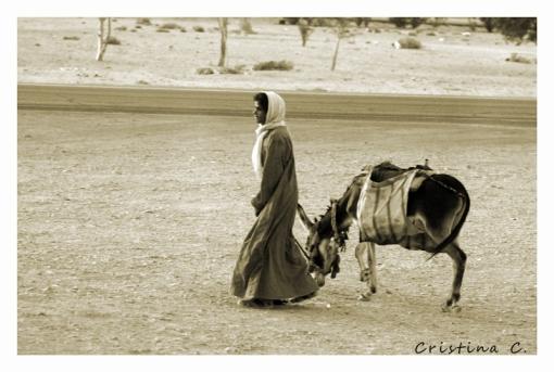 beduinid